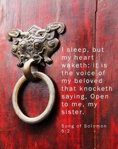 Song of Solomon (Part 8)