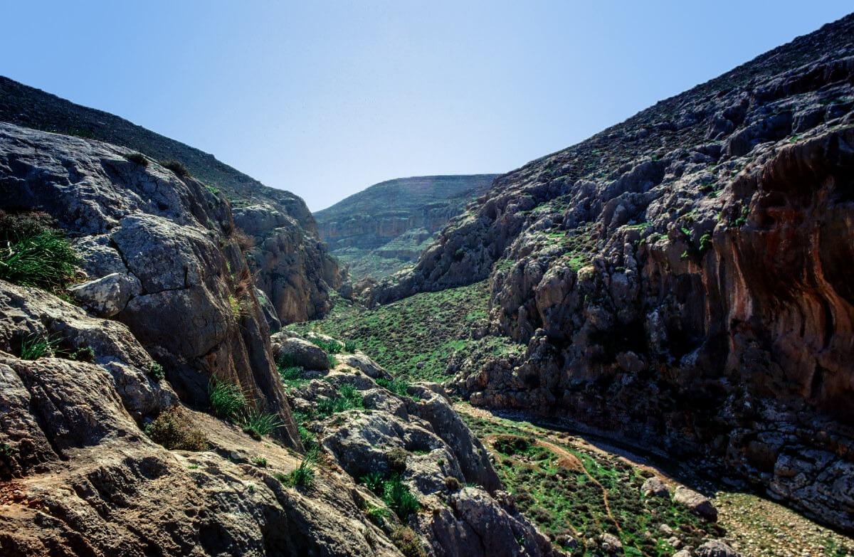 A Natural History of Biblical Lands (5)