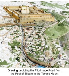 2000 Year Old Pilgrimage Road Discovered in Jerusalem