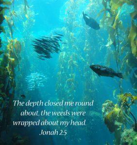 Jonah – The Enigmatic Prophet (3)