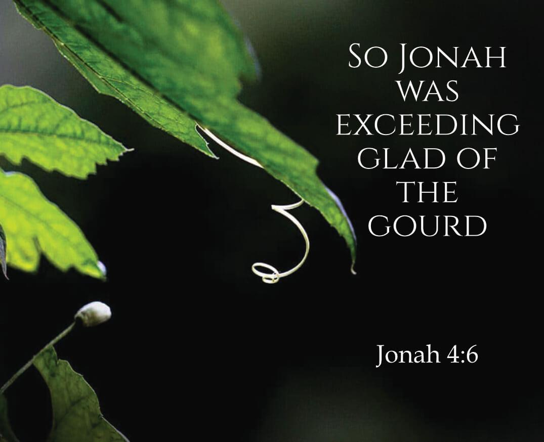 Jonah – The Enigmatic Prophet (5)